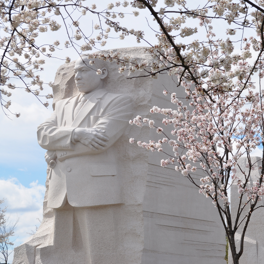 GUEST COLUMN: The Content of His Character: Reflections on Donald J. Trump on MLK Day
